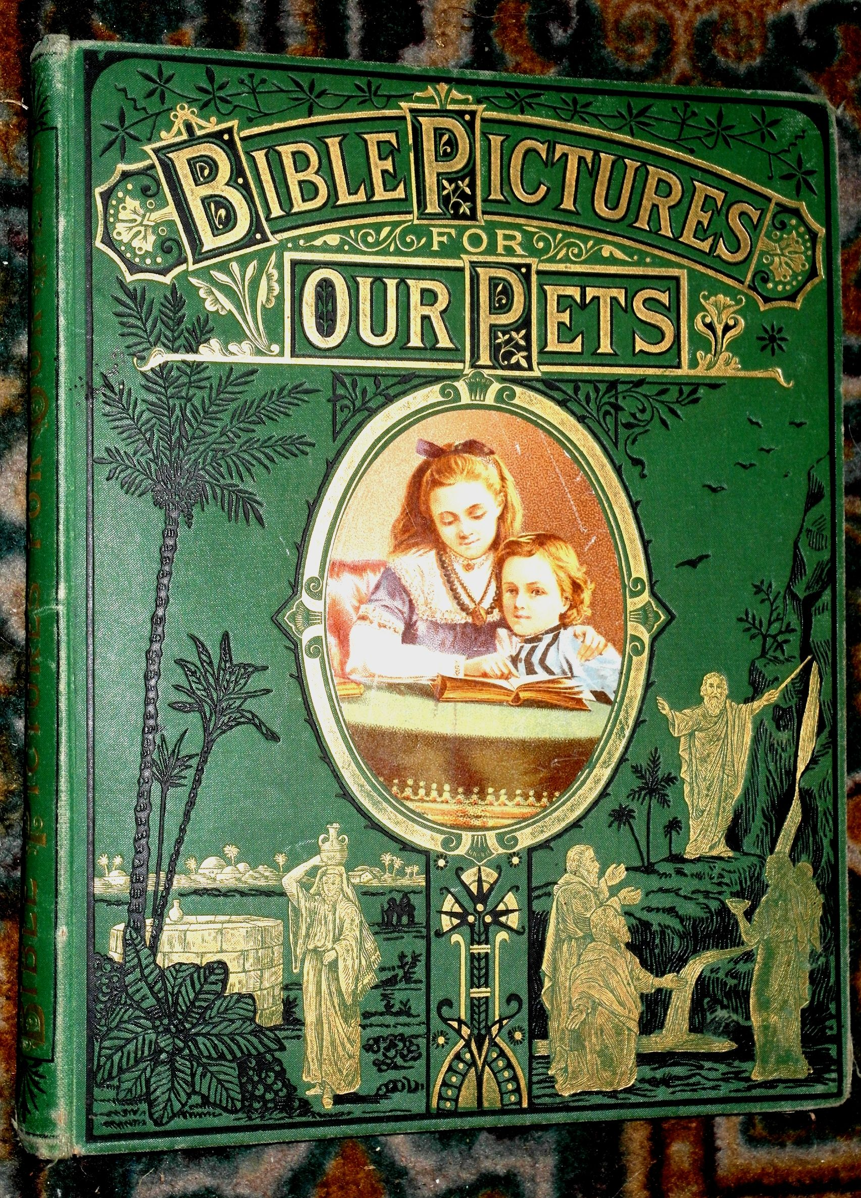 Beautifully Illustrated Book Covers ~ Bible pictures for our pets c illustrated children s